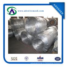 Высокое качество оцинкованной железной проволоки (АДС-ГВ-01)