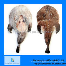 High quality frozen monkfish