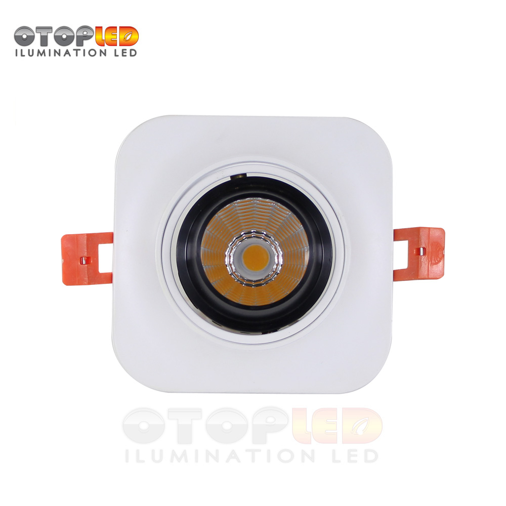 LED DOWN LIGHT 10W