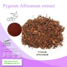 ISO -Pygeum Africanum Extract Powder //Pygeum Africanum P. E.
