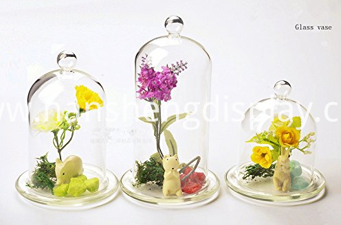 Clear Glass Tabletop Display Case