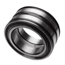 Full Complement Double Row Cylindrical Roller Bearing SL045015PP