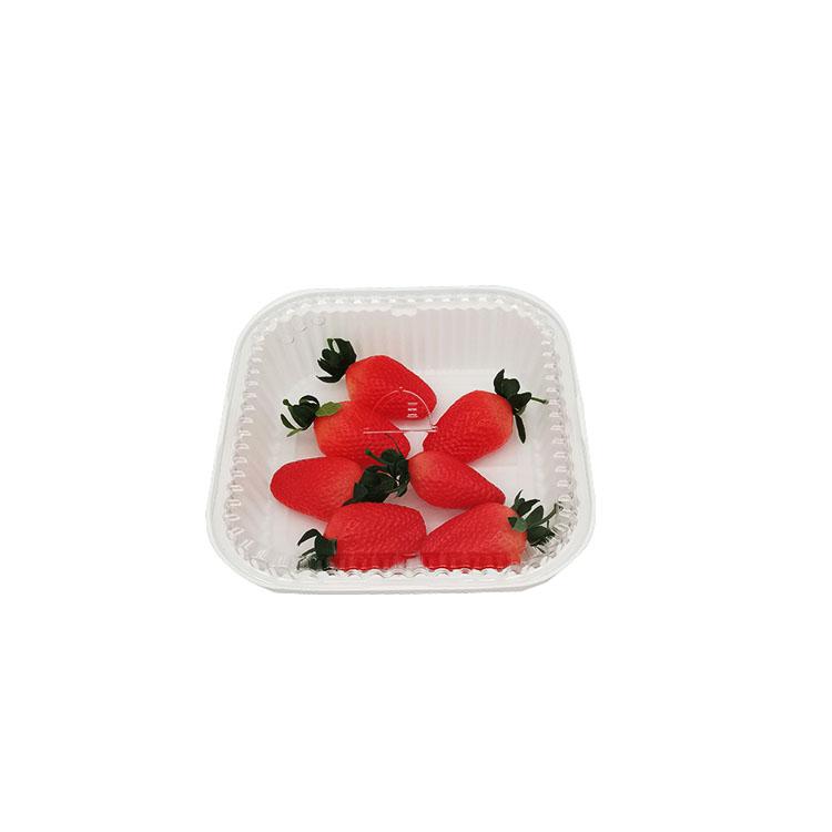 Plastic Sushi Box