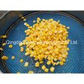 2015 Crop Canned Sweet Corn Brc, HACCP, FDA