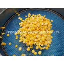 2015 Colheita de milho doce enlatado Brc, HACCP, FDA