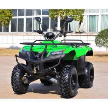 Elektrischer Start Utility ATV 250cc Geländewagen ATV (MDL GA009-3)