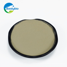 Hot Sale feed additive probiotics Bacillus Subtilis