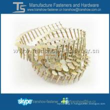 Galvanisé clous de toiture de bobine de fil de 15 degrés pour le clou de bobine