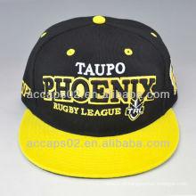 Logotipo customizado em bordado em 3D snap back hat