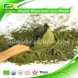2015 New Dietary Supplements Organic Wheatgrass Juice Powder