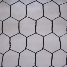 Kuantitas Bagus Vinyl Coated Chicken Wire Mesh