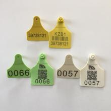Leading for Devided Cow Ear Tag plastic ear tag good quality export to Bahamas Exporter