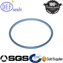 Teflon Face Seals Spring Loaded Seals -PTC