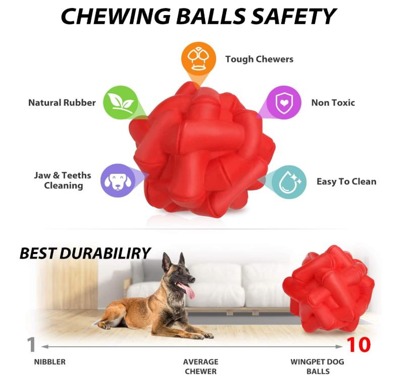 Dog Training Balls