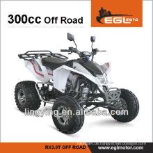 300CC rechtliche Sport Rennrad