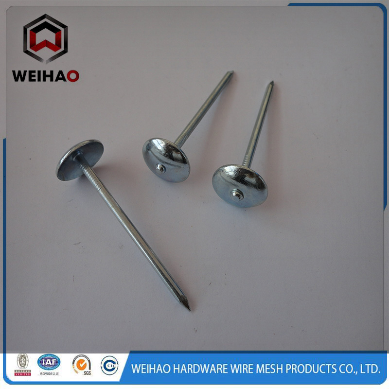 roofing nails 123