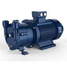 2BV Wasserring-Vakuumpumpe