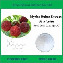 Natural Myricetin 99% do extrato da casca de Bayberry