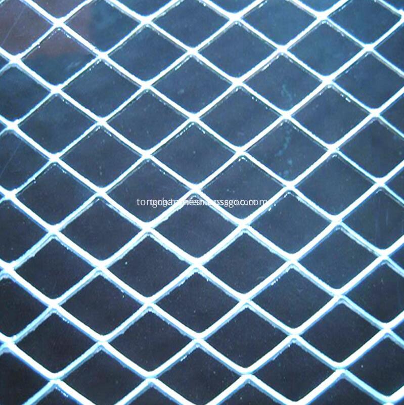 expaned mesh 04