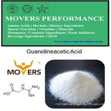 High Quality Human Nutrition: Guanidineacetic Acid