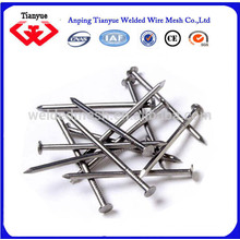 15cm common iron nails