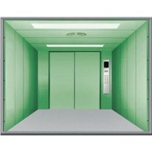 Fujizy en acier peint bon ascenseur