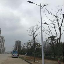 China for Outdoor Street Lamp Customized 100W LED Street Light With Poles export to China Hong Kong Factories