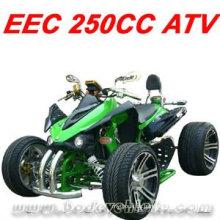 250CC RACING ATV QUAD (MC-388)