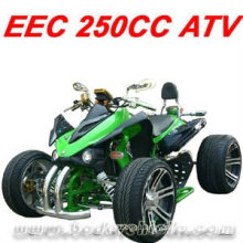 250CC RACING ATV QUAD(MC-388)