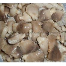 Cogumelo em conserva de cogumelo de abacaxi com preço barato