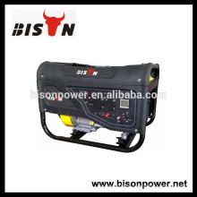 BISON (CHINA) CE Gerated European Generator