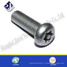 Fabriqué en Chine pan head torx machine screws
