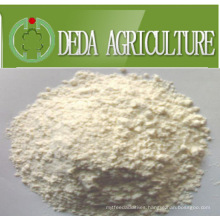 Rice Protein Meal Animal Feed Powder