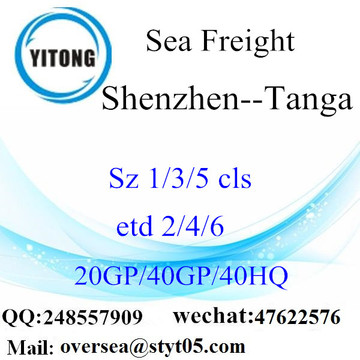 Shenzhen Port Sea Freight Shipping Para Tanga