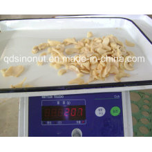 Hot Sales Canned Mushroom Pns with Best Prices and Suitable Quality to Meet Each Market Level.