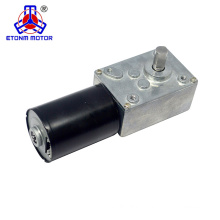 ETONM 12v Brushless Worm Gear Motor with worm 58mm gear box reduction Low noise