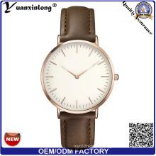 Xyl-579 3ATM Waterproof Japan Movt Quartz Watch Stainless Steel Back, 3 ATM Stainless Steel Back Watch, Watch Women Lady