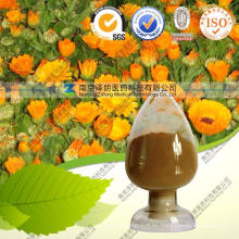 Extracto de flor natural de Calendula Officinalis 10: 1
