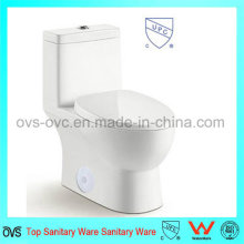 Baño Upc Flush Valve One Piece Toilet