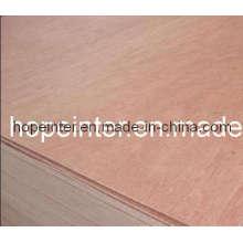 Contraplacado de Bintangor / contraplacado (HL026)