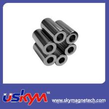 Ímãs baratos do Neodymium do cilindro grande em China