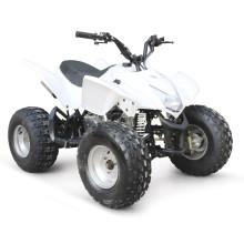 110CC ATV EPA RACING BILLIG QUAD