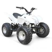 110CC ATV EPA CARRERAS QUAD BARATOS
