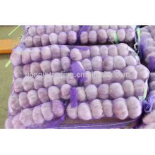 Réservoir à froid Ail rouge 250g / sac, sac 5kg / mesh