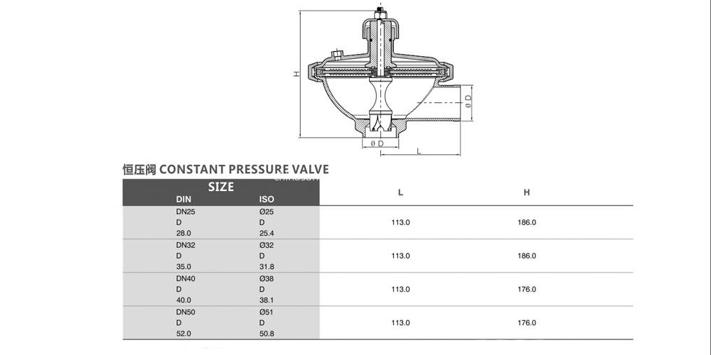 Constant pressure valve