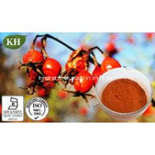 Vitamine naturelle C5%; Rose Hip Extract 10-30% Polyphénol,
