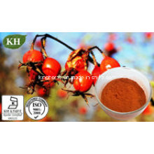 Натуральный витамин С5%; Экстракт розы Hip 10-30% Polyphenol,
