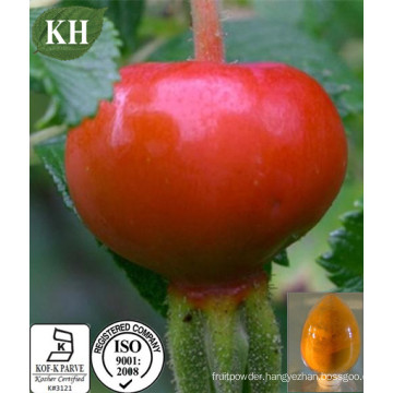 100% Natural Rosa Mosqueta Extract / Rosehip P. E/Rosehips Extract