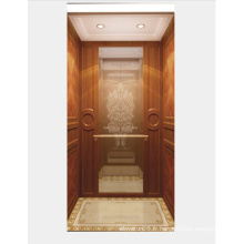 Miroir Etching Stainless Steel Home Elevator