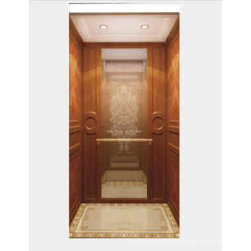 Mirror Etched Stainless Steel Home Elevator